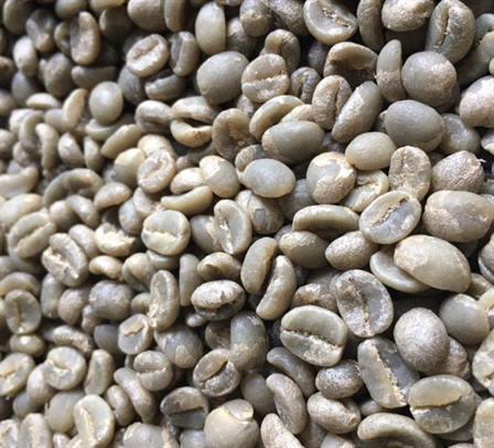 Green coffee from Burundi
