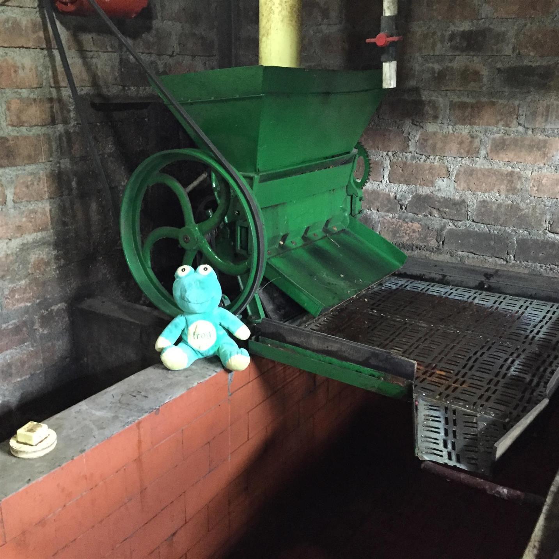 De-pulper at La Palma farm