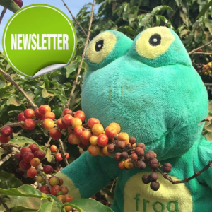 Quaffee Newsletter V5I7 November 2016