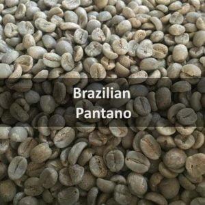 Green Brazilian Pantano