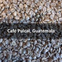 Green Guatemalan Café Pulcal