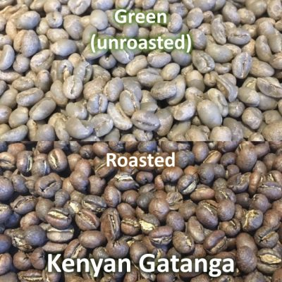 Kenyan Gatanga PB green and roasted