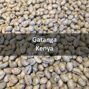 Green Kenyan Gatanga