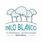 Gt Palo Blanco Logo