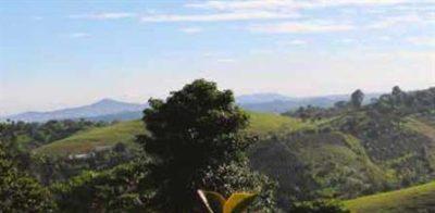 Gt Palo Blanco Vista