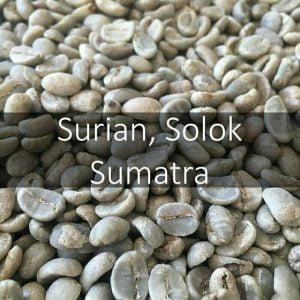Green Sumatran Solok coffee